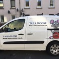Image 1 for Tae a Moose Pest Control Services Ltd